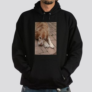 Nala the golden retriever reclining on Sweatshirt