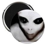 Alien Grey Magnet