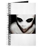 Alien Grey Journal