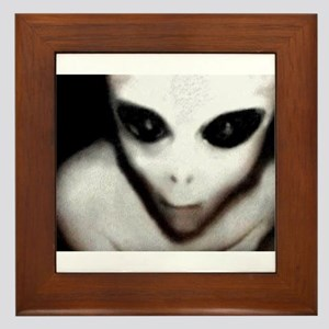 Alien Grey Framed Tile
