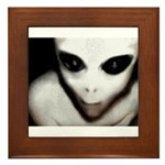 Alien Grey Framed Tile