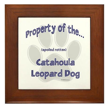 Catahoula Property Framed Tile