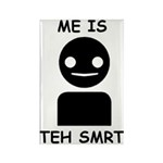 Me is teh smrt Rectangle Magnet (100 pack)