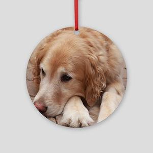 Nala the golden retriever reclining Round Ornament