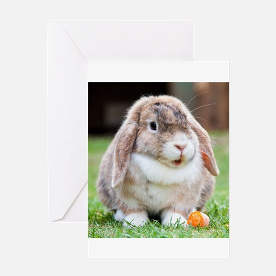 Long Eared Bunny and Carrot Greeting Cards