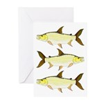 Giant Tigerfish Greeting Cards