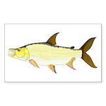 Giant Tigerfish Sticker