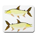 Giant Tigerfish Mousepad