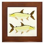 Giant Tigerfish Framed Tile
