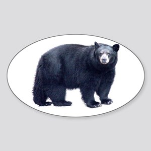 Black Bear Oval Sticker