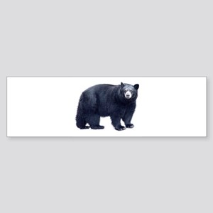 Black Bear Bumper Sticker