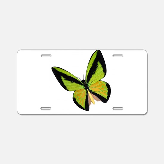 Pretty Green Butterfly Aluminum License Plate