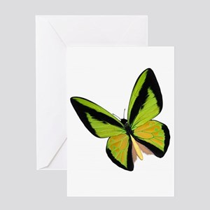 Pretty Green Butterfly Greeting Cards