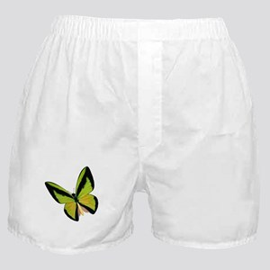 Pretty Green Butterfly Boxer Shorts