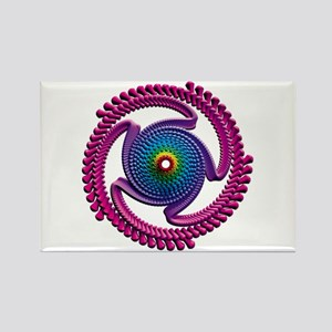 Spiral Candy2 Rectangle Magnet