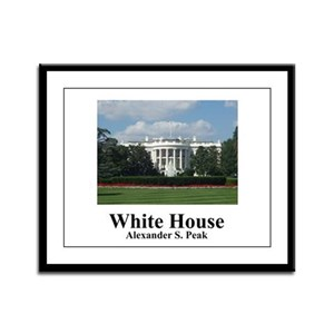 White House Framed Panel Print