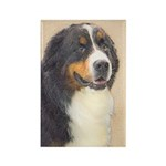 Bernese Mountain Dog Rectangle Magnet (100 pack)