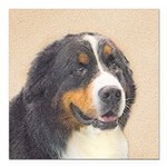 Bernese Mountain Dog Square Car Magnet 3