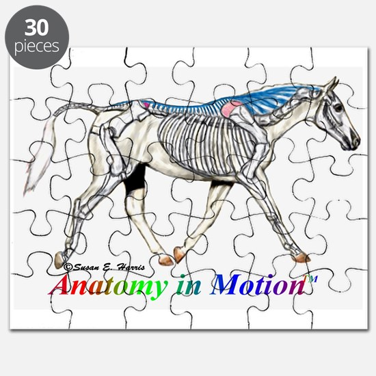 Visible horse skeleton Puzzle