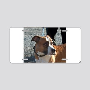 american staffordshire terrier Aluminum License Pl