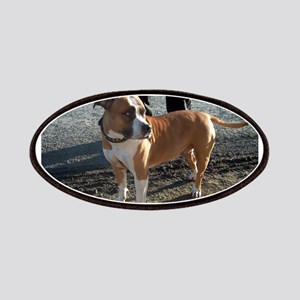 american staffordshire terrier full Patch