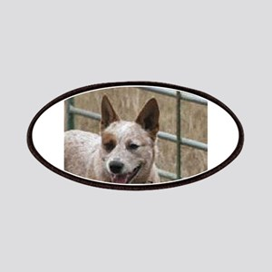 australian cattle dog red Patch