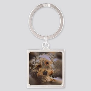 Penny the Yorkipoo Keychains