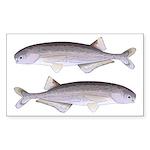 Baby Whale Fish Sticker