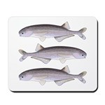 Baby Whale Fish Mousepad
