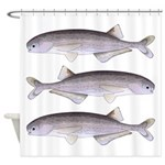 Baby Whale Fish Shower Curtain
