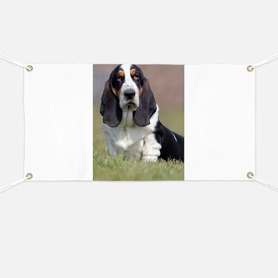 Basset hounds Banner