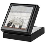 April Showers Keepsake Box
