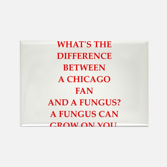 chicago Magnets