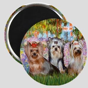 Monet's Garden & Yorkie Trio Magnet
