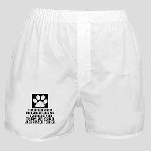 Jack Russell Terrier Awkward Dog Desi Boxer Shorts