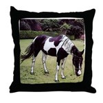 Sugar Baby American Paint Horse Throw Pillow