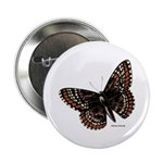 Baltimore Butterfly Button
