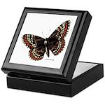 Baltimore Butterfly Keepsake Box