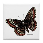 Baltimore Butterfly Tile Coaster