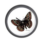 Baltimore Butterfly Wall Clock