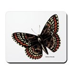 Baltimore Butterfly Mousepad