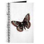 Baltimore Butterfly Journal
