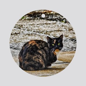 Tortoiseshell Cat Round Ornament