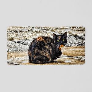 Tortoiseshell Cat Aluminum License Plate