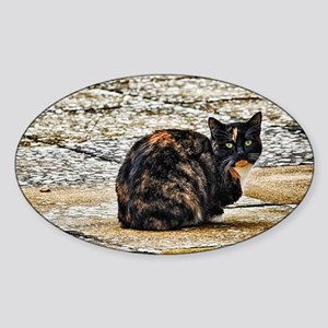 Tortoiseshell Cat Sticker