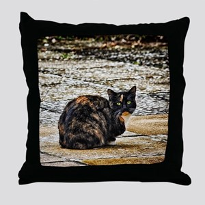 Tortoiseshell Cat Throw Pillow