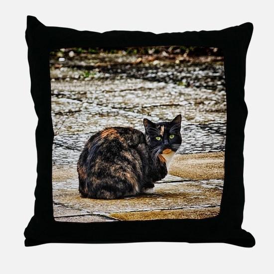 Tortoiseshell Cat Throw Pillow