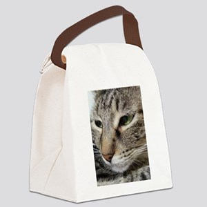 Brown Tabby Cat Canvas Lunch Bag