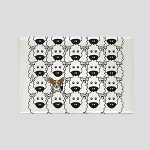 Cardie in the Sheep Magnets