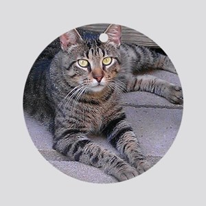 Brown Tabby Round Ornament